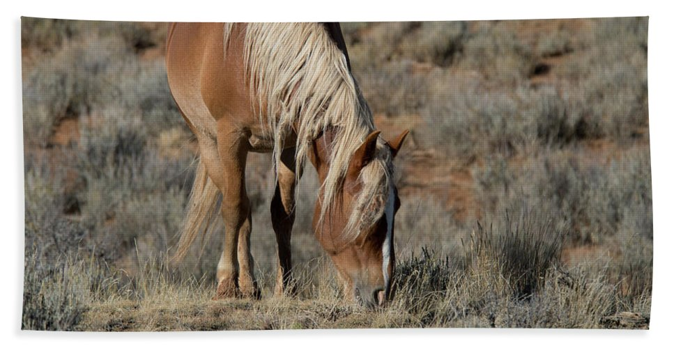 Cody Beach Towel featuring the photograph The Joy of Nature by Frank Madia