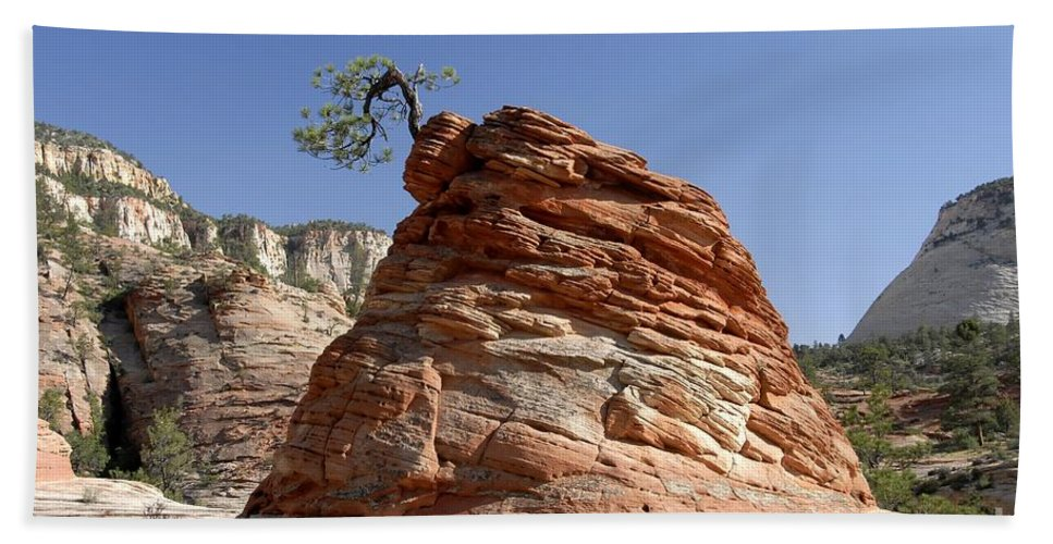 Zion National Park Utah Beach Towel featuring the photograph The Land Of Zion by David Lee Thompson