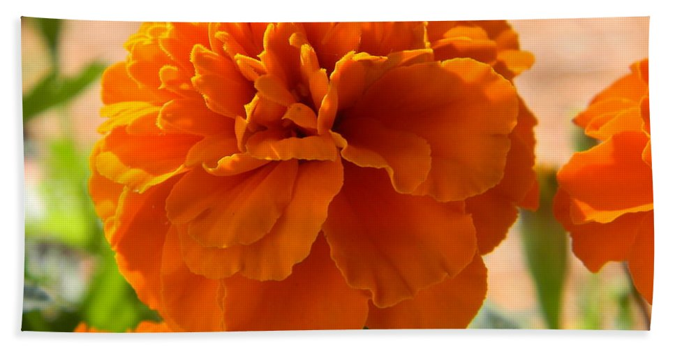 Flower Beach Towel featuring the photograph The Last Marigold by Leslie Revels