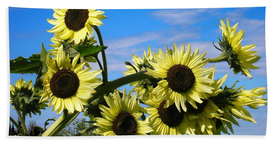 Flowers Beach Towel featuring the photograph The Last Of Summer by Steve Karol