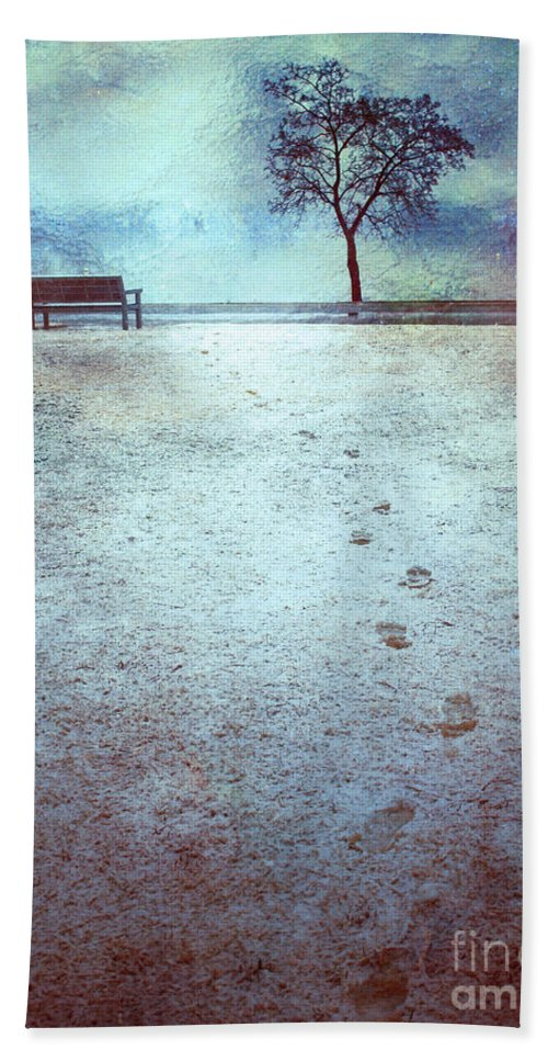 Bench Beach Towel featuring the photograph The Last Snowfall by Tara Turner