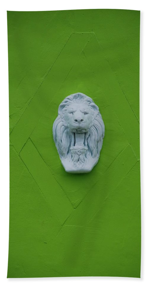 Lion Beach Towel featuring the photograph The Lion by Rob Hans
