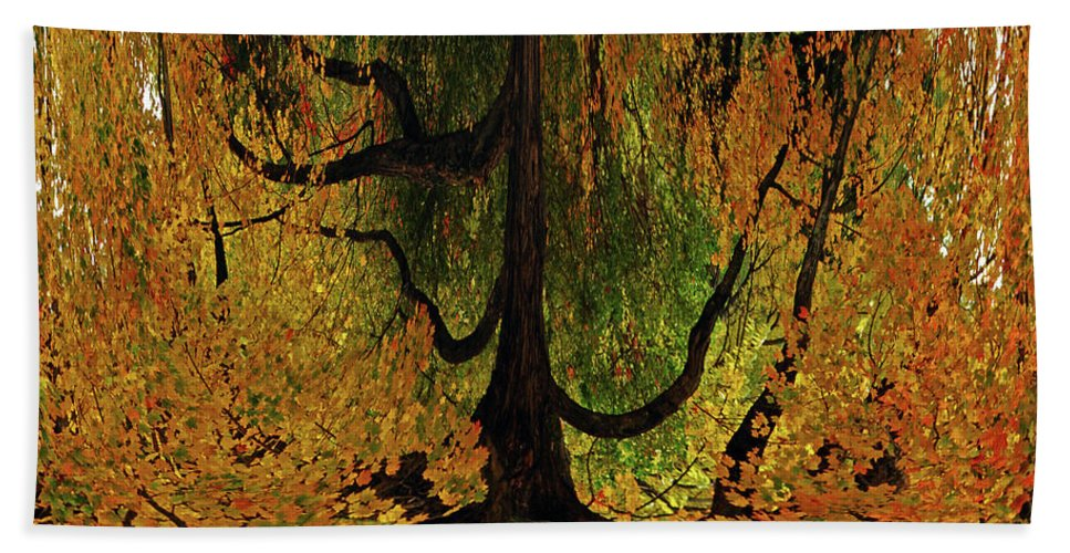 Tree Beach Towel featuring the photograph The Melting Tree by Lori Tambakis