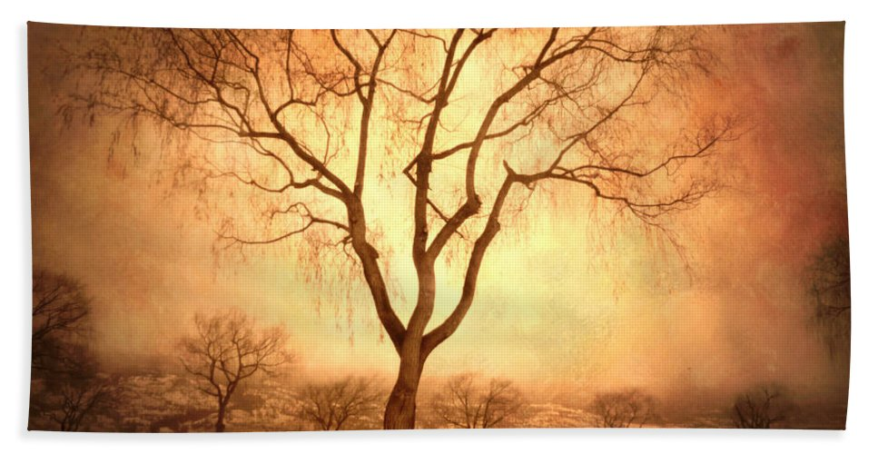 Trees Beach Towel featuring the photograph The Mother Tree by Tara Turner