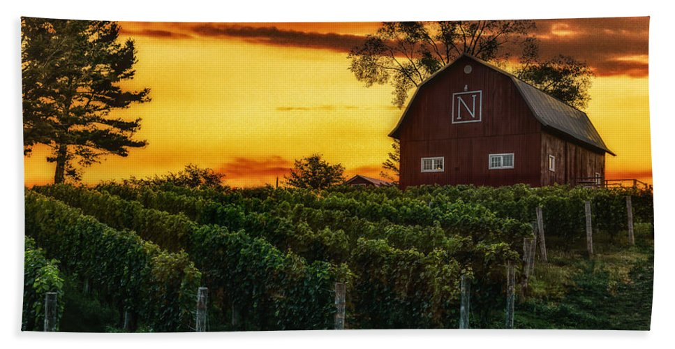 Vineyard Beach Towel featuring the photograph The North Country by J Thomas