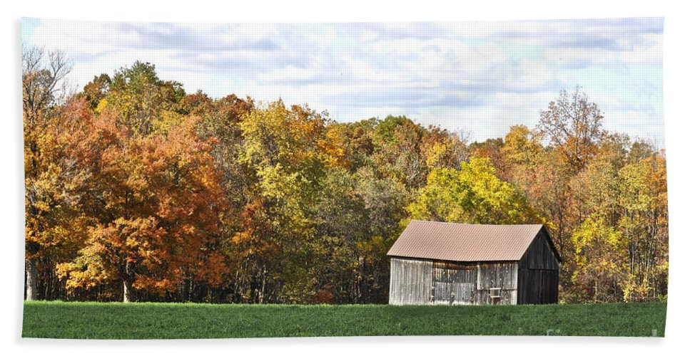 Autumn Beach Towel featuring the photograph The Old Barn by Penny Neimiller