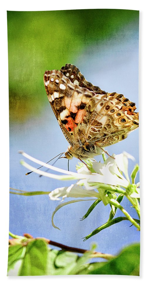 Painted Lady Butterfly Beach Towel featuring the photograph The Painted Lady by Saija Lehtonen