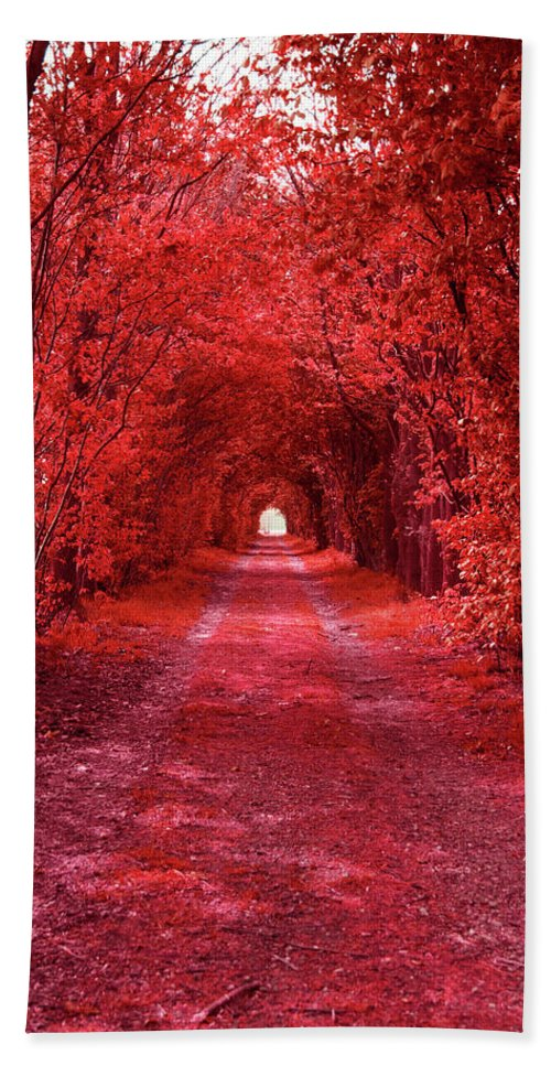 Red Beach Towel featuring the photograph The Path 2 by Steve K