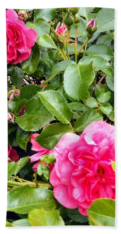 Botanical Flower's Nature Beach Towel featuring the photograph The peaceful place 10 by Valerie Josi