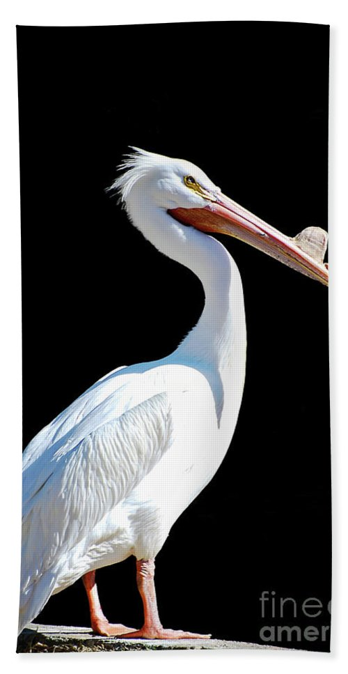 Pelican Beach Towel featuring the photograph The Pelican by Saija Lehtonen