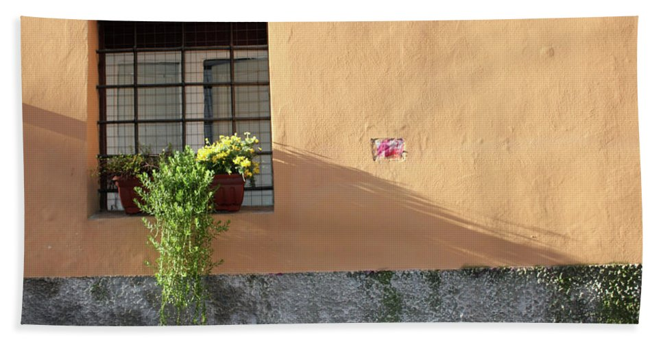 Rome Beach Towel featuring the photograph The Plant by Munir Alawi