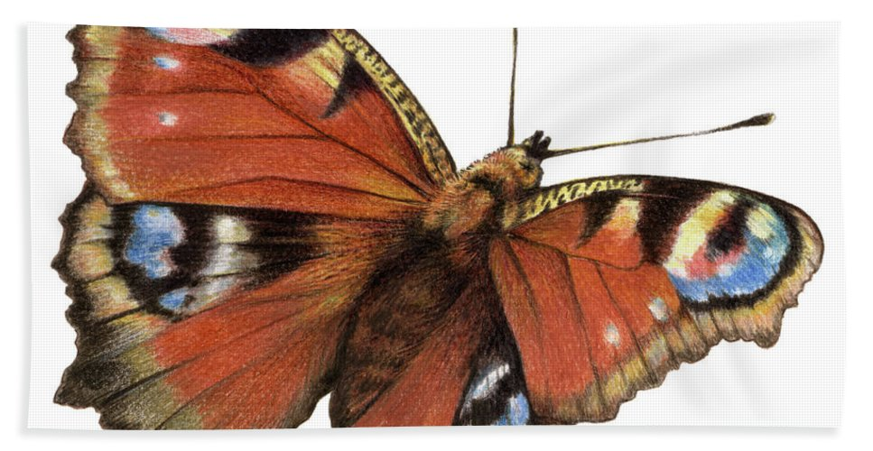 Butterfly Beach Towel featuring the painting The Rainbow Of The Peacock by Johannes Margreiter