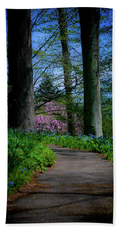 Trees Beach Towel featuring the photograph The Road To Peace And Quiet by Trish Tritz