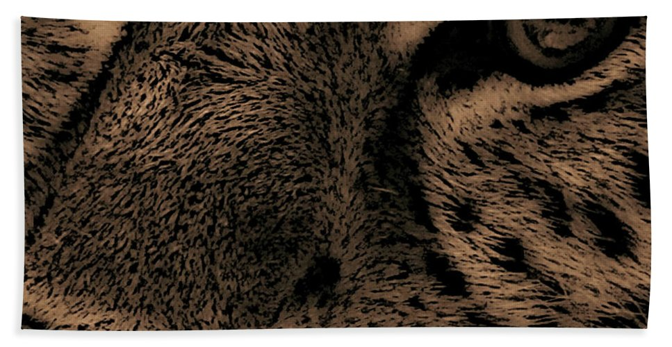 Nature Beach Towel featuring the photograph The Stare by Martin Newman