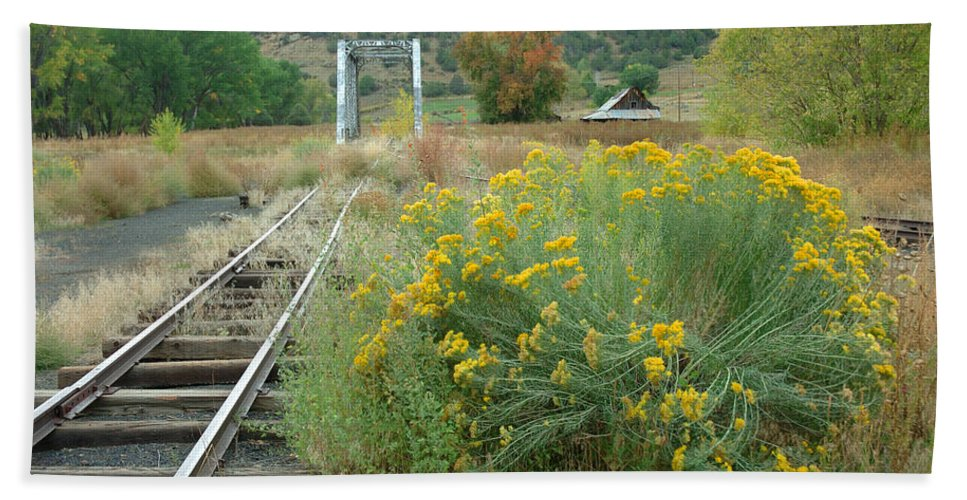 Train Beach Towel featuring the photograph The Tracks At Pagosa Junction by Jerry McElroy