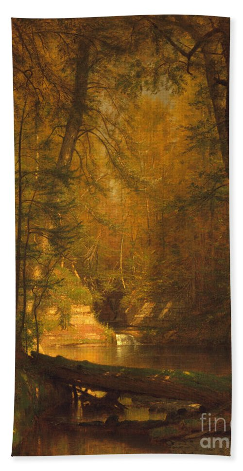The Trout Pool Beach Towel featuring the photograph The Trout Pool by John Stephens