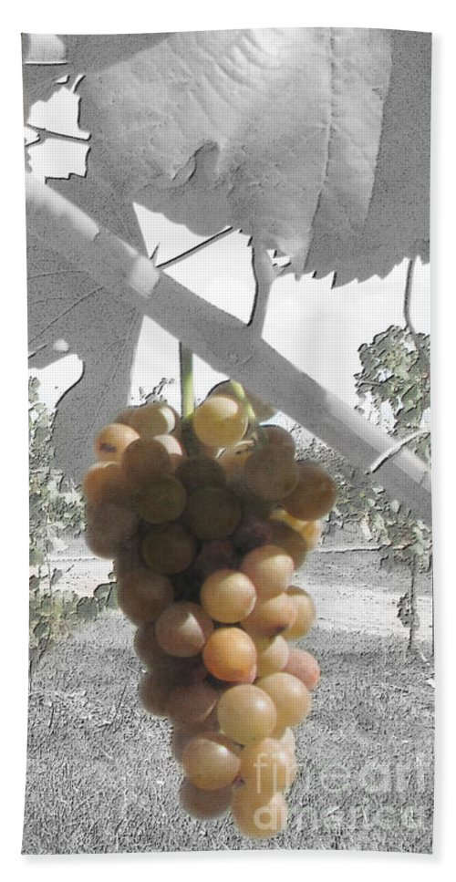 Grapes Beach Towel featuring the photograph The Vineyard 2 by September Stone