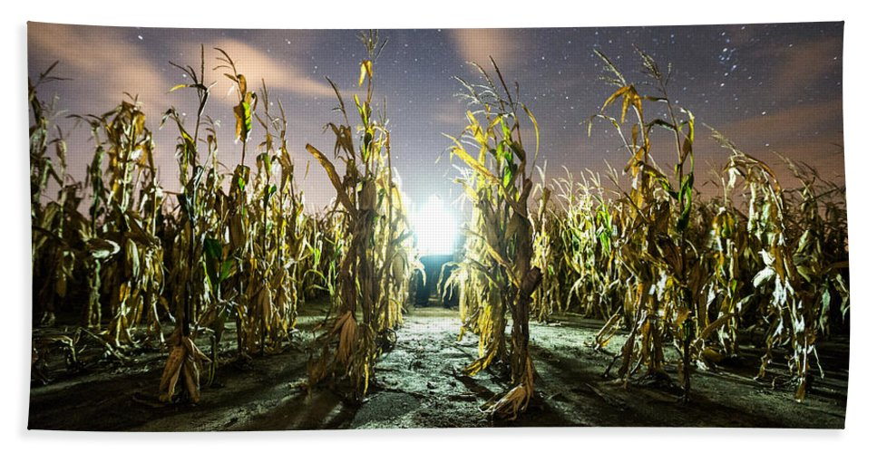 Beach Towel featuring the photograph The Visitor by Aaron J Groen