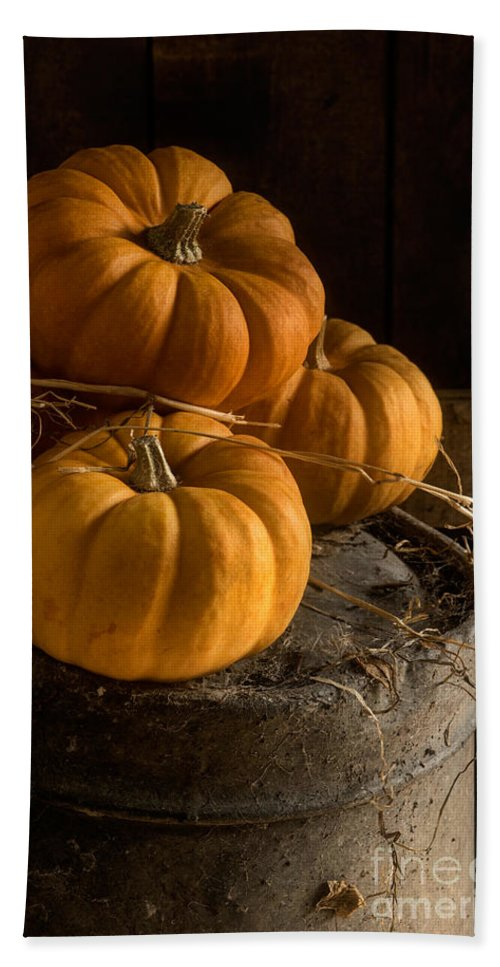 Three Pumpkins Beach Towel featuring the photograph Three Pumpkins On A Bucket by Ann Garrett