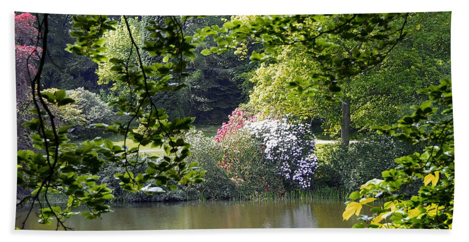 Countryside Beach Towel featuring the photograph Through The Tree by Svetlana Sewell