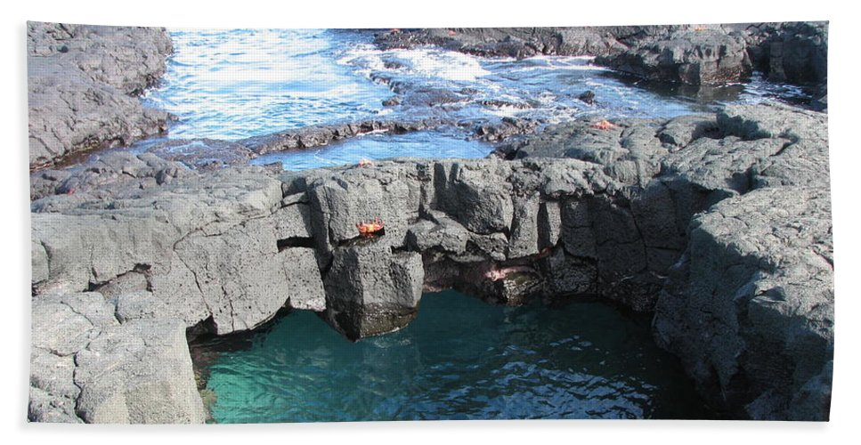 Seascape Beach Towel featuring the photograph Tidal Pool by Sandra Bourret