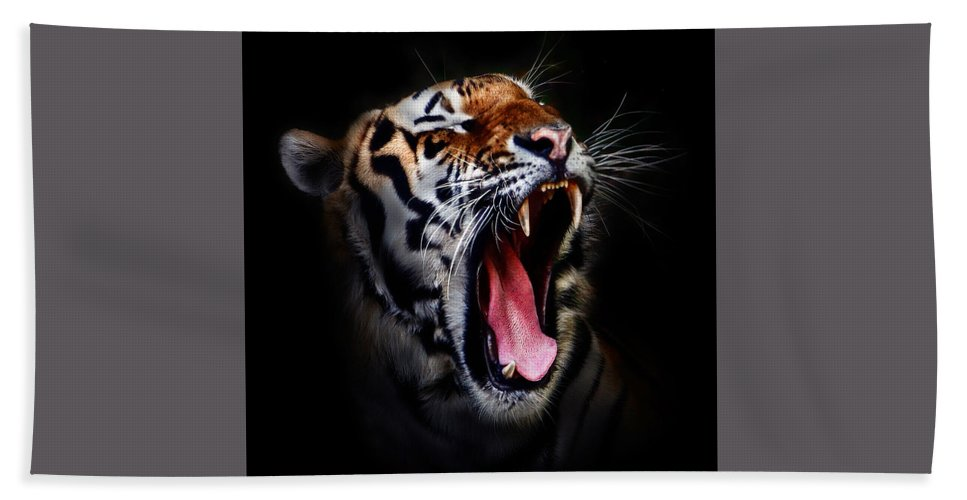 Animal Beach Towel featuring the photograph Tiger 10 by Ingrid Smith-Johnsen