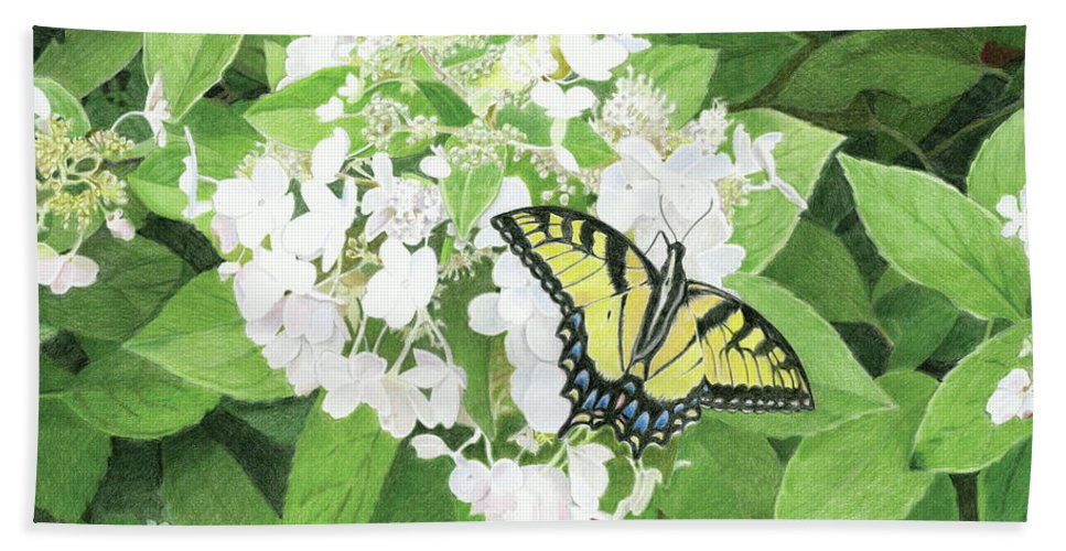 Tiger Beach Towel featuring the drawing Tiger Swallowtail by Keith Alan Spaar
