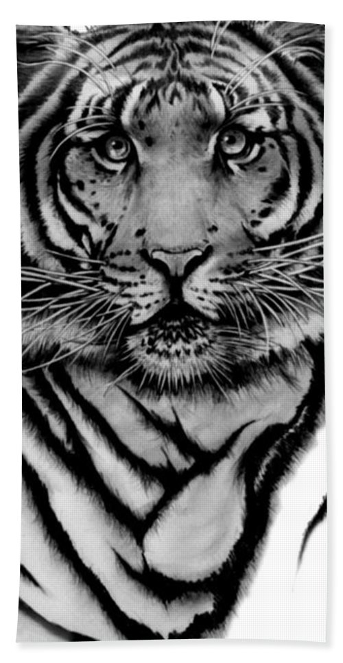 Tiger Beach Towel featuring the drawing Tiger Tiger by Duke Windsor