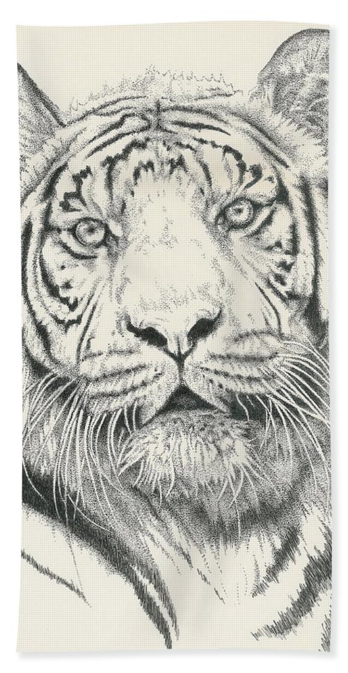 Tiger Beach Towel featuring the drawing Tigerlily by Barbara Keith