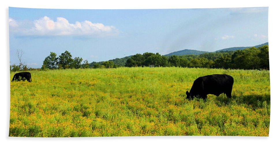 Cow Beach Towel featuring the photograph Til The Cows Come Home by Kristin Elmquist