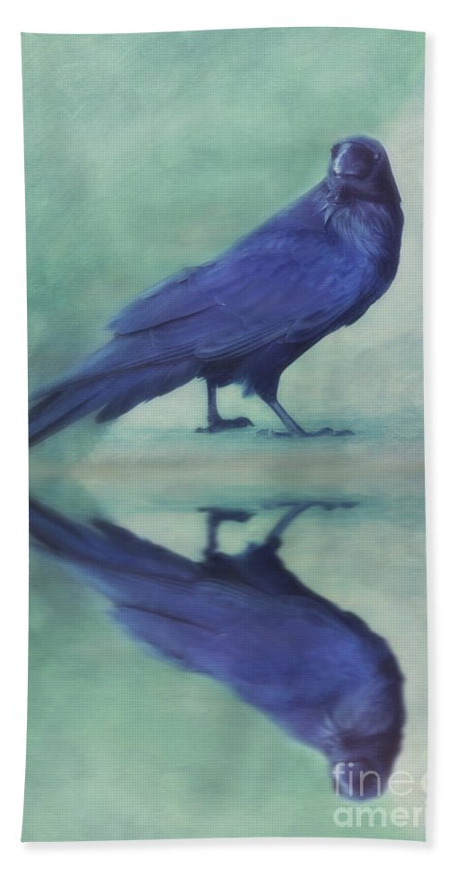 Raven Beach Towel featuring the photograph Time To Reflect by Priska Wettstein