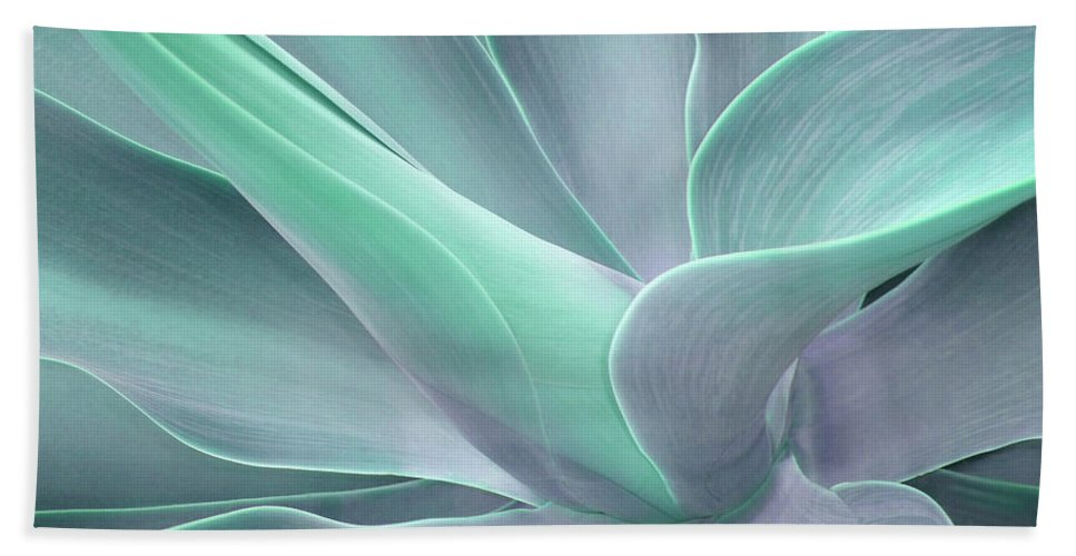 Agave Beach Towel featuring the photograph Tinted Agave Attenuata Abstract by Bel Menpes