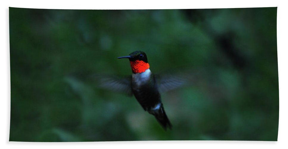 Hummingbird Beach Towel featuring the photograph Tiny Flier by Lori Tambakis