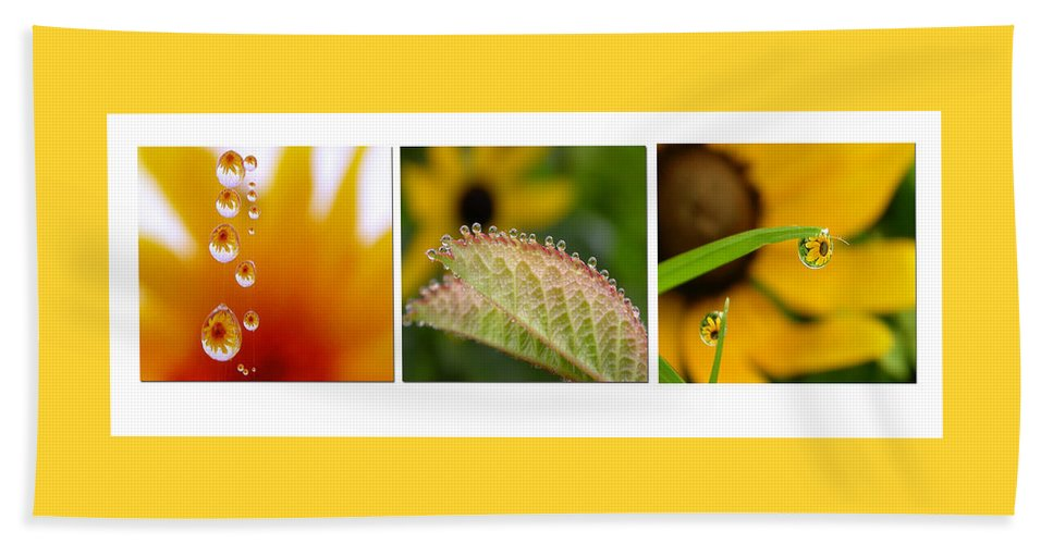 Dew Beach Towel featuring the photograph Tiny Miracles by Linda Murphy