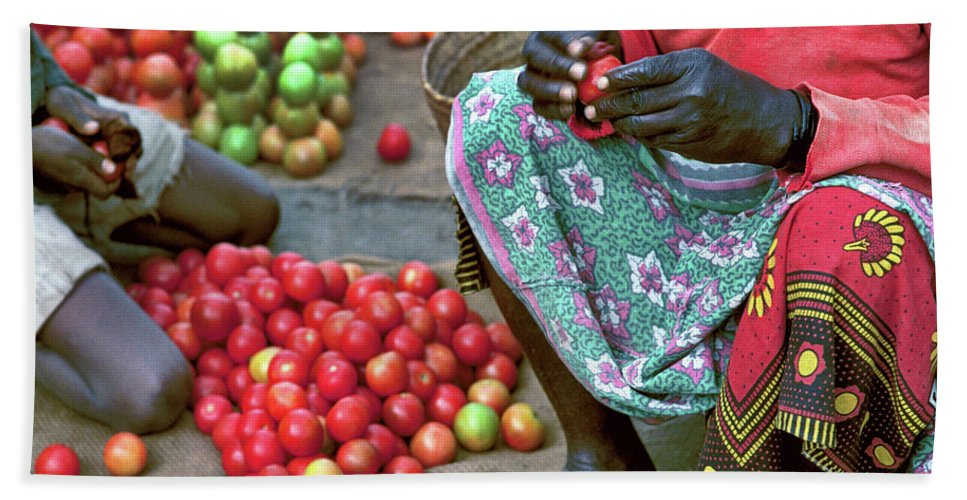 Fruit Beach Towel featuring the photograph Tomatoes by Don Schimmel