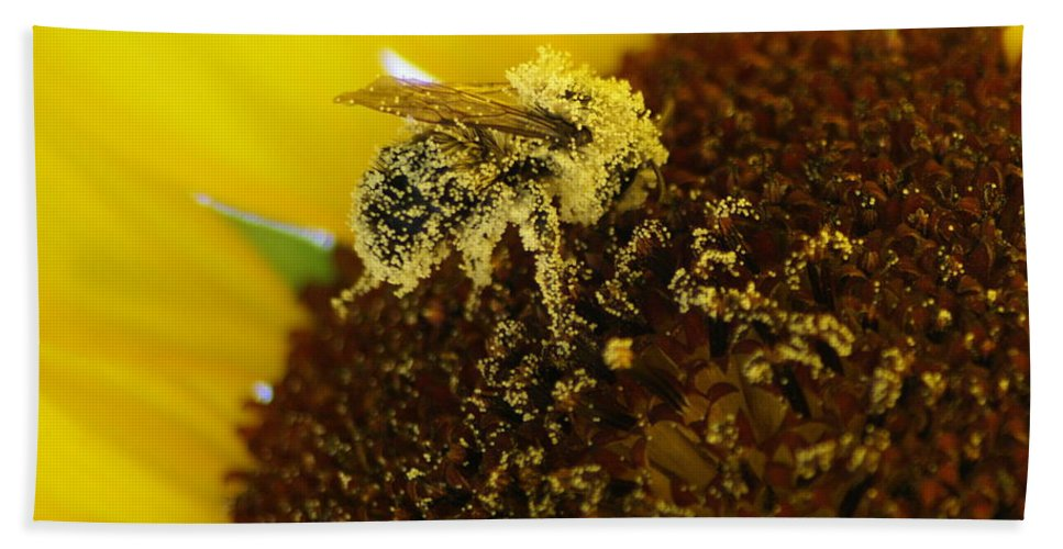 Spokane Beach Towel featuring the photograph Too Much Pollen by Ben Upham III