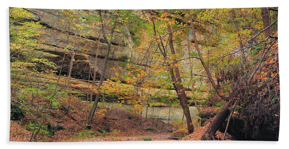 Tonty Canyon Beach Towel featuring the photograph Trail In Tonty Canyon by Greg Matchick