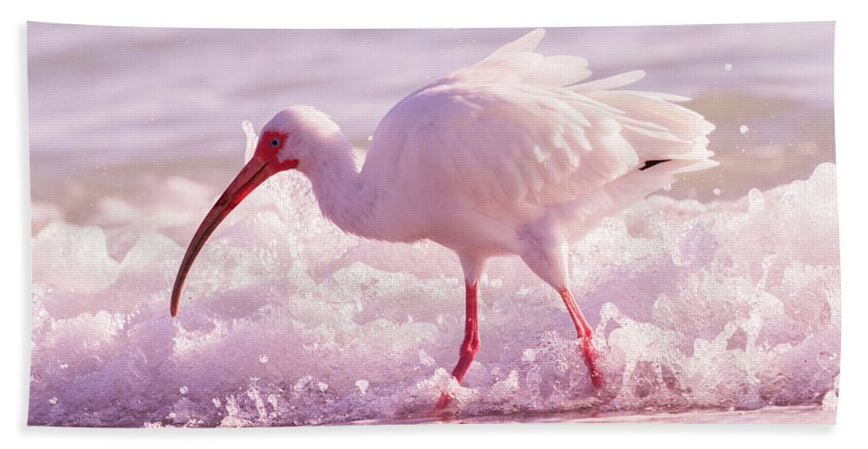 Ibis Beach Towel featuring the photograph Tranquil Beauty Cortez Beach by Betsy Knapp