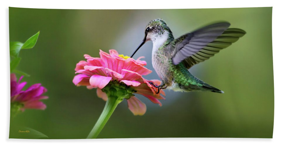 Hummingbird Beach Towel featuring the photograph Tranquil Joy by Christina Rollo