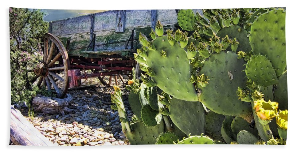 Wagon. Cactus Beach Towel featuring the photograph Transport Of A Forgotten Era by Douglas Barnard