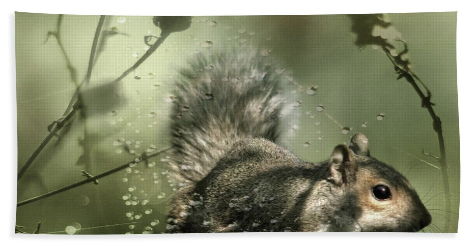 Cobweb Beach Towel featuring the photograph Trapped by Angel Ciesniarska
