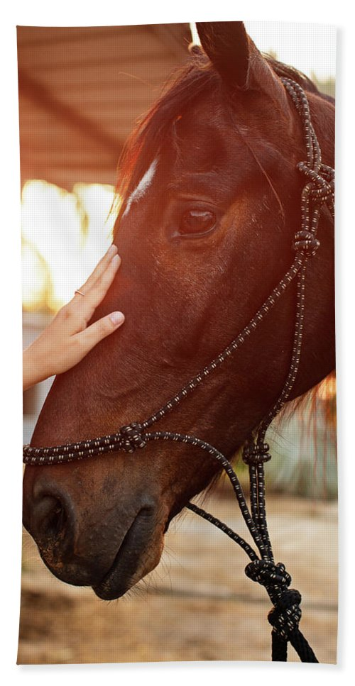 Woman Beach Towel featuring the photograph Treating From Depression With The Help Of A Horse by Jan Pavlovski