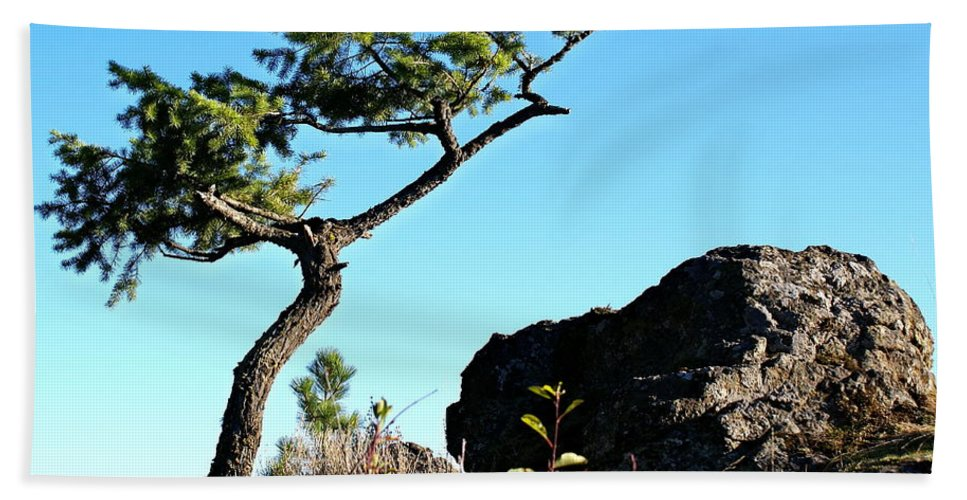 Nature Beach Towel featuring the photograph Tree And Rock by Ben Upham III