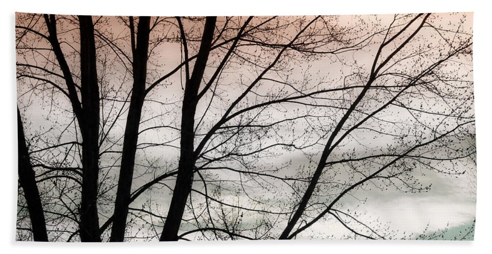 canvas Print Beach Towel featuring the photograph Tree Branches by James BO Insogna