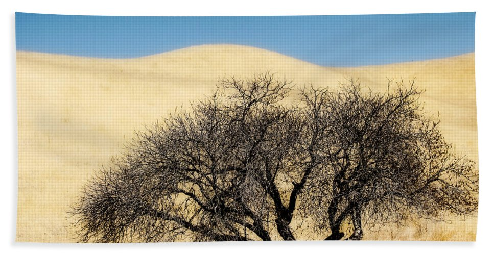 Trees Beach Towel featuring the photograph Tree Formation 3 by Karen W Meyer