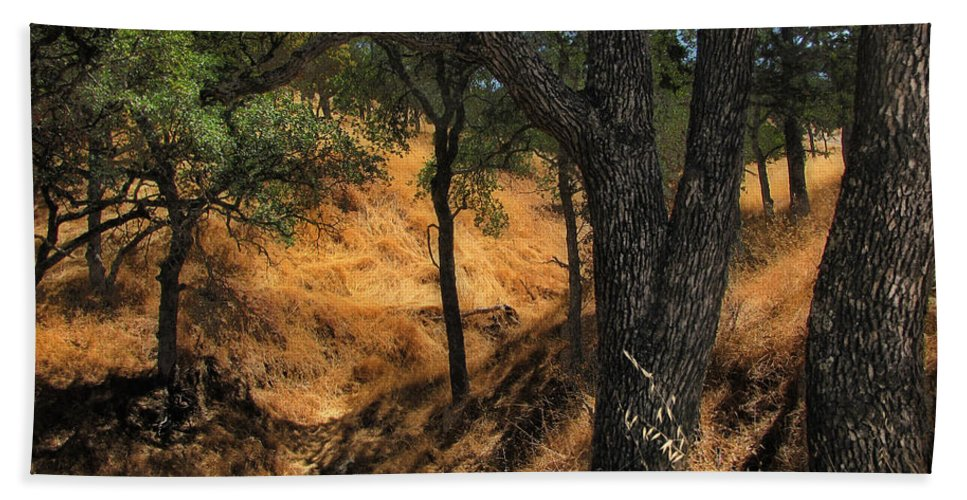 Trees Beach Towel featuring the photograph Tree Formation 4 by Karen W Meyer