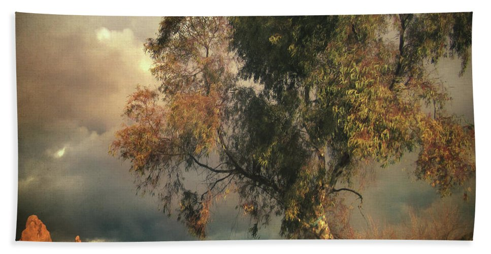 Tree Beach Towel featuring the photograph Tree Of Confusion by Zapista