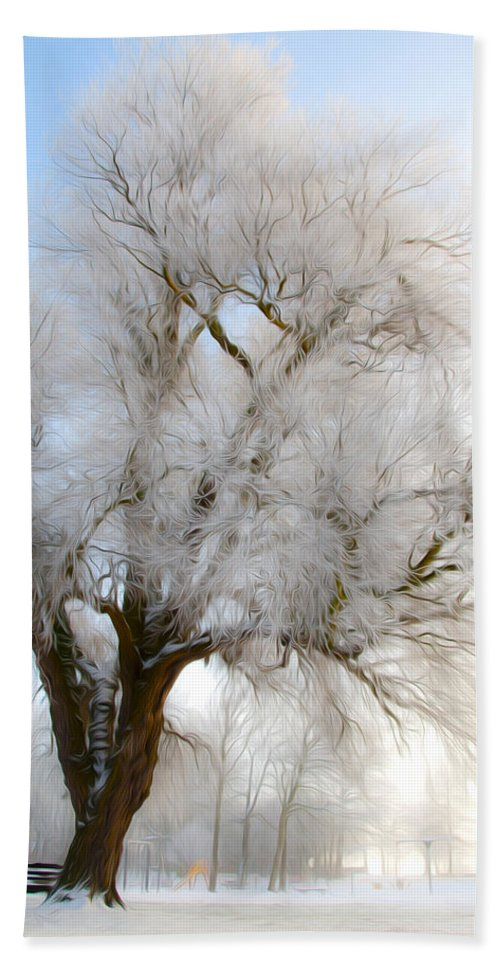 Blue Beach Towel featuring the photograph Tree by Svetlana Sewell
