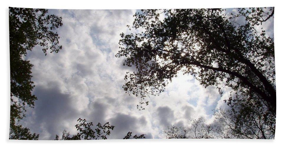 Tree Beach Towel featuring the photograph Tree Swirl by Deborah Crew-Johnson