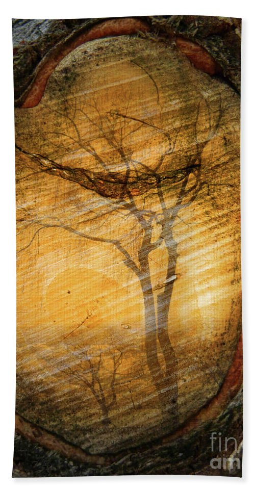 Trees Beach Towel featuring the photograph Tree Within A Tree by Tara Turner